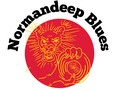 Normandeep Blues Promotion